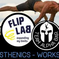 Team Alpha Bar - Calisthenics Workshop