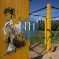 Tartu - Parco Calisthenics - BMX Park