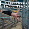 BARLIONS Calisthenics Training - Flex Staedele