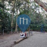 """São Paulo - Barre de traction en plein air - Parque """"Tenente Siqueira Campos"""" Trianon"""