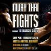 Muaythai And MMA Fights Nettetal