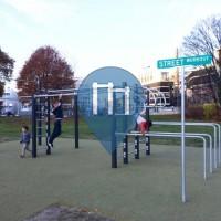 Zurich - Outdoor Exercise Gym - Allmend Brunau