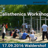 Calisthenics Workshop Waldershof by Calisthenics Parks