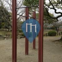 Neyagawa-shi - уличных спорт площадка - 四條畷イオン