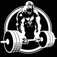 gorilla_strong_bamberg