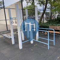 Calisthenics-Stationen - New York City - Outdoor Gym London planetree playground