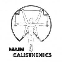 Main Calisthenics Gruppenworkout