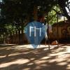 Londrina - Calisthenics Park - Centro de recreação e lazer Luigi Borghesi