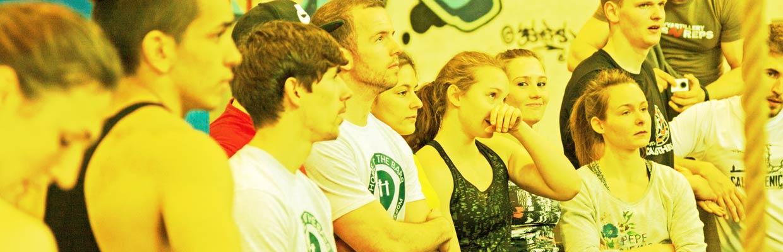 Fans von Calisthenics Parks